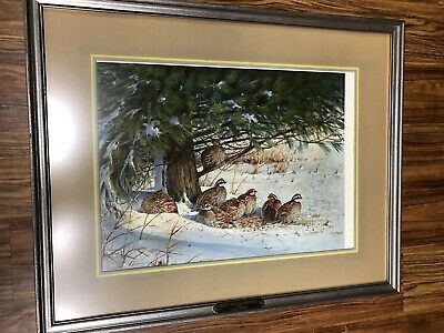 """Owen Gromme Midday Retreat - Bobwhite Signed Framed & Matted Limited Ed 31 x 25"""""""