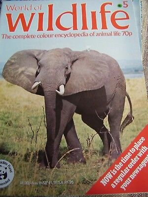 World Of Wildlife # 5 By Orbis Africa Hunters And Hunted Of The Savannah 1971