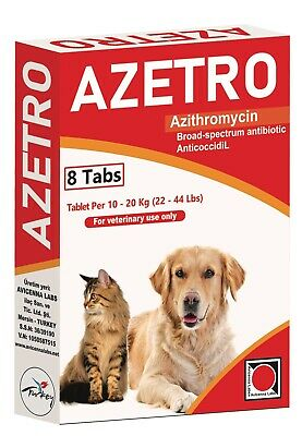 Azetro For Dogs And Cats
