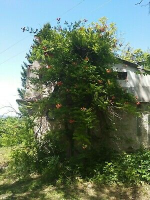 House / Villa with large Plot and Great Views in Bulgaria, Renovate or Rebuild