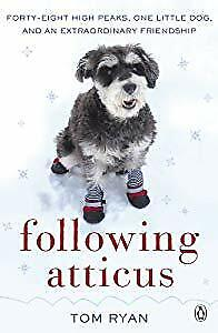 Following Atticus: How a little dog led one man on a journey of rediscovery to t