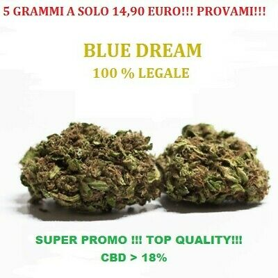 CANAPA ERBA SATIVA LIGHT ‼️ 5 Grammi ‼️- Blue Dream -  BIO SUPER PROMO 💯