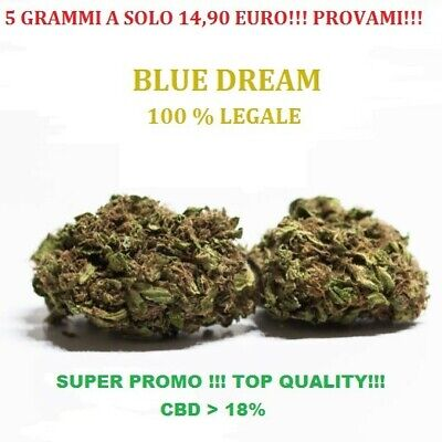 Blue Dream- CANNABIS ERBA LEGALE Light 18% - 5g  - (TOP QUALITY)