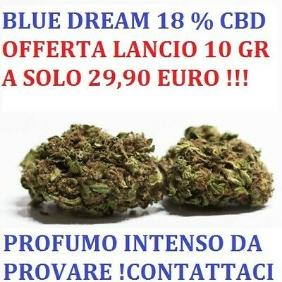 CANAPA ERBA SATIVA LIGHT ‼️ 10 Grammi ‼️- Blue Dream -  BIO SUPER PROMO 💯 legal