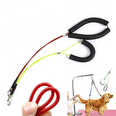 For Table No-Sit Pet Haunch Holder of Dog Grooming Restraint Harness Leash Loop