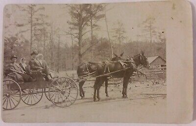 Vintage 1907 RPPC Real Photo Postcard Couples in Wagon on Outing in Forest