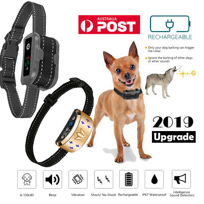 2019 Electric Remote Anti Bark Collar Dog Stop Barking Training Control Trainer