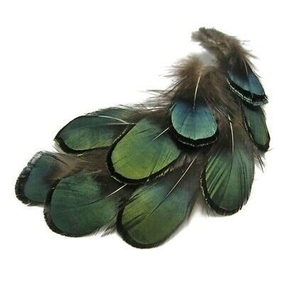 50pcs DIY Amherst Natural Green Pheasant Feather for Craft Decorative Handicraft