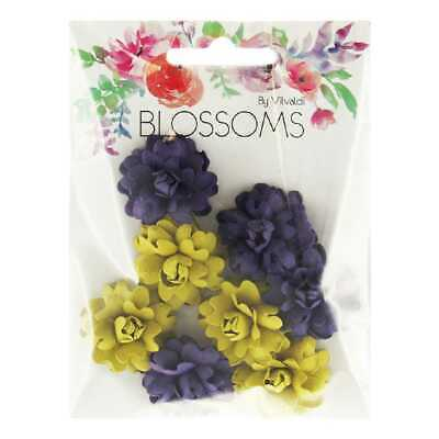 NEW Ribtex Gregoria Blossoms Pack By Spotlight