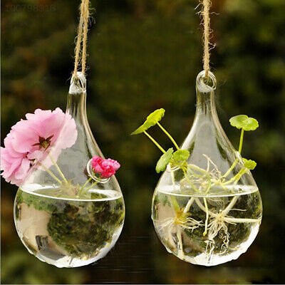4659 Clear Glass Hanging Vase Bottle Hydroponic Container Plant Flower DIY Home