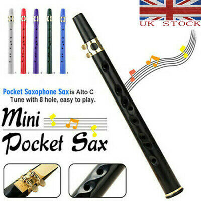 Newest Woodwind Sax Mini Portable Saxophone Little Saxophone With Carrying Bag