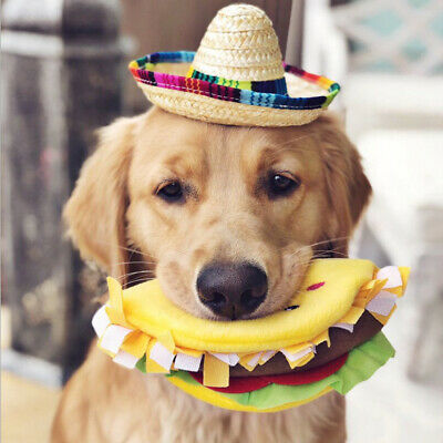 Hawaii Colorful Pet Straw Hat Holiday Sun Hat Funny Dress Up Dog Cat Hat Summer
