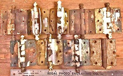 "Antique Hinges (8) Ball Top Brass 2x3.5"" Vintage"