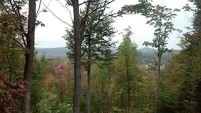 Land 10 Acres in Mancelona, MI Mountaintop Views With Small Roughed in Cabin