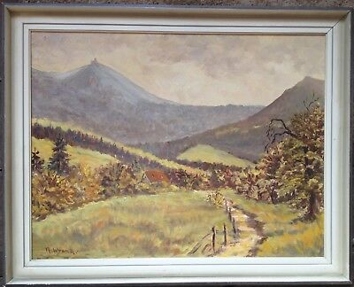 Unknown Castle Oil Painting Antique Palatinate? Signed N. Wrana ? Wer Knows Den