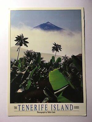 The Tenerife Island Series - Old Postcard - Posted 1997