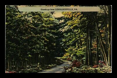 Us Linen Postcard Greetings From Lenhartsville Pennsylvania Wooded Path