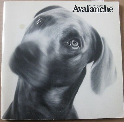 Avalanche #7, 1973 Willoughby Sharp, Lisa Bear, Ed Ruscha, General Idea, Van Sch