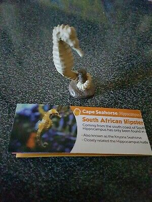 """Yowies Wild Water Series 5 """"Cape Seahorse"""" NEW Free postage"""
