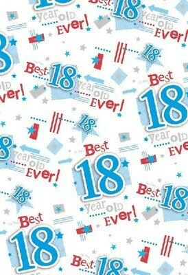 2 Sheets Gift Wrapping Paper HAPPY 80th BIRTHDAY 80 Today Blue Mens Ladies Boy