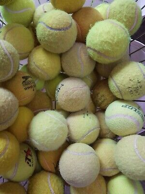 30 Used Tennis Balls For Dogs.  BEWARE, UNWASHED BALLS CAN BE DANGEROUS FOR DOGS