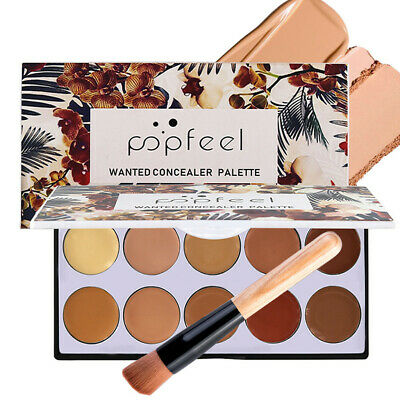 Full Coverage Cream Concealing Foundation Concealer Makeup Silky 10 Colors+Brush