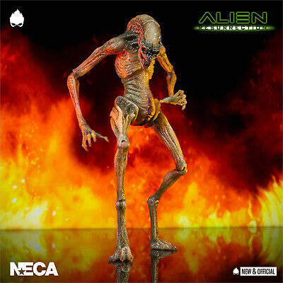 "NECA - Newborn Alien: Resurrection 11"" Action Figure [IN STOCK] •NEW & OFFICIAL•"