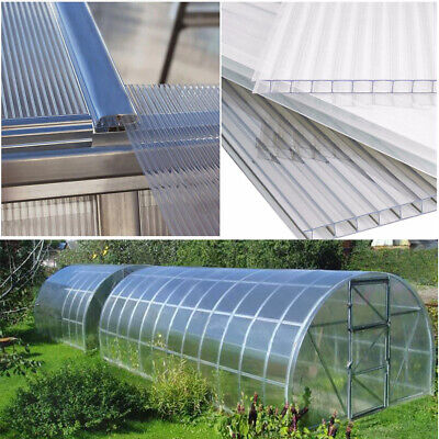 4mm Clear Polycarbonate Sheet Panels Twinwall Greenhouse Cold Frame Shed Glazing