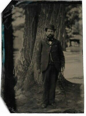 Charming Tintype Photograph - Bearded Man Standing Next to Large Tree Outdoors