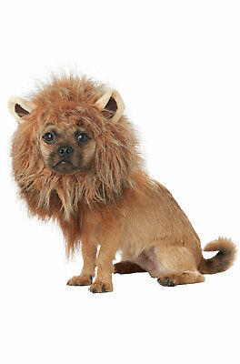 King of the Jungle Lion Simba Inspired Pet Dog Costume
