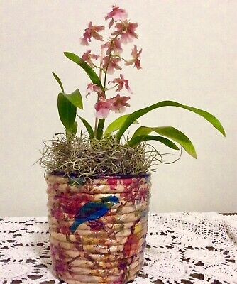 Water hyacinth  hand decorated planter pot with birds and blossoms