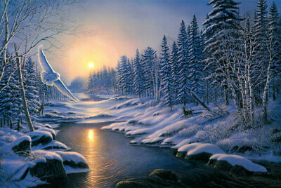 Art Wall Picture Print Oil painting Snow Scene Animal Eagle on Canvas Home Decor