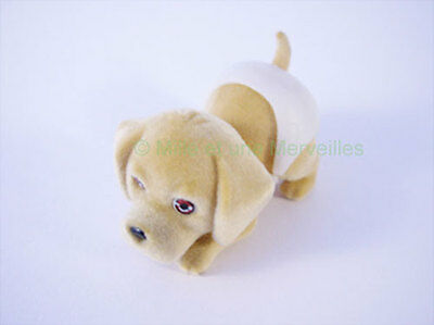 Figurine DORKIE sa carte Puppy and Kitty in my Pocket Couche Magique