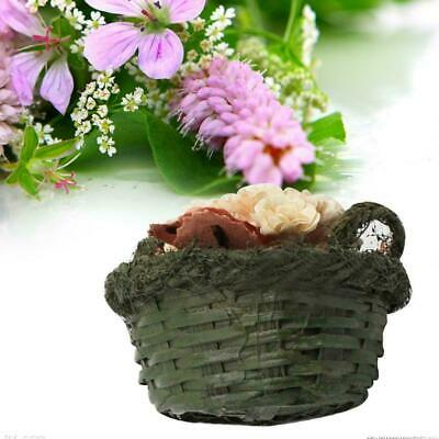 1:12 Dollhouse Miniature Flower Fruit Mini Basket Decoration Gift Toy Doll F9W1