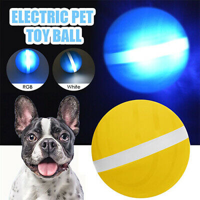 Wicked Ball New Design Pet Dog Cat Toys Interactive Toy Electric Companion Cat