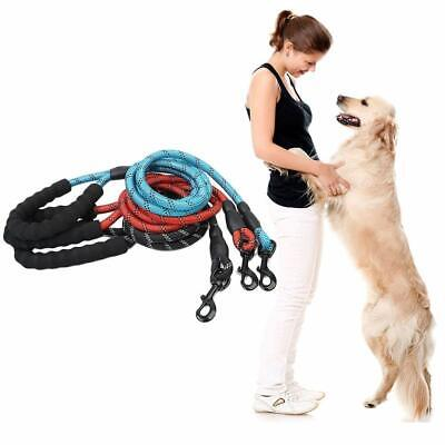 Multi-Color Strong Dog Leash Climbing Rope Reflective Thread Night Safe