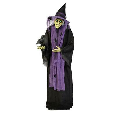 Halloween Props Life Size Decor Witch with Raven Animated Lighted Sounds Lights