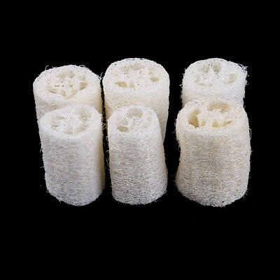 6Pcs Natural Loofah Luffa Loofa Spa Bath Sponge Kitchen Clean Scrubber Exotic✔OI