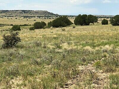 70 Acres Santa Fe Ranches,  SOUTHERN COLORADO (FOR SALE BY OWNER) $29,995