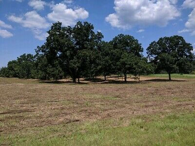 33 acres for sale in southern Alabama