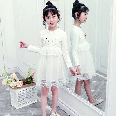 Casual Spring Autumn Girls Cute Embroidered Mesh Long-Sleeve Princess Dress