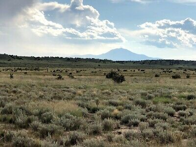 **New**  36.46 Acres In Southern Colorado Mountains,   Cordova Mesa $24,995
