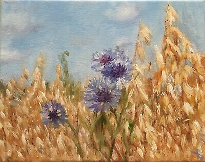 "Original Oil Painting, Floral, CORNFLOWERS IN OATS 8x10"" Schelp"