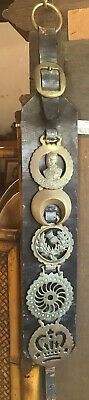 Antique Horse Brasses on Leather 1890-1900