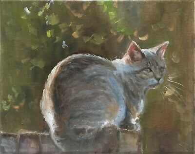 "Original oil painting, Animals, Cat, IN THE EVENING RAYS 8x10"" Schelp"