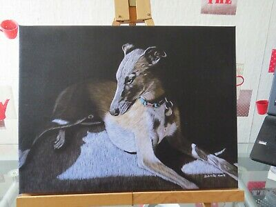 WHIPPET GREYHOUND DOG  Canvas Wall Art Picture Print SIZE 12 X 16