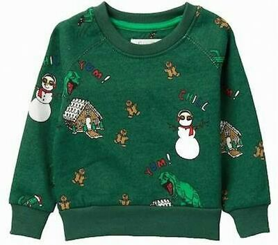 NEW Sovereign Code Baby Boys GIRL Sweater Green SIZE 12 MONTHS Holiday Bryson