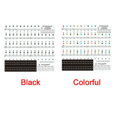 Color Piano Stickers for 49/54/61/88 Key Keyboards – Transparent and Removable