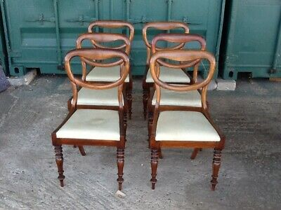 Set of 6 victorian rosewood balloon back dining chairs drop in seats