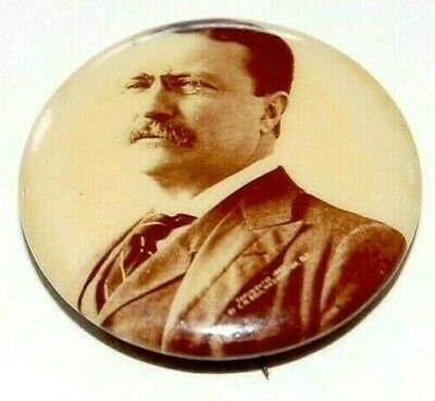 1904 TEDDY ROOSEVELT theodore campaign pin pinback button presidential political